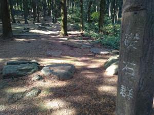Kiyama27