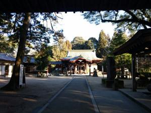 Chikushi51
