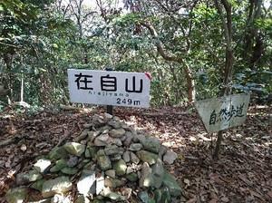 Miyaji83
