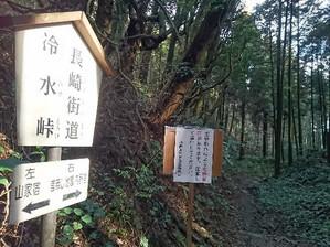 Hiyamizu06